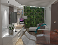 12/2015 Interior Design Study and TV Area