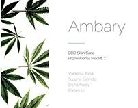 Ambary (ii)- Promotional Mix, Budget, Advertisement