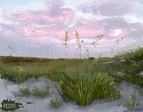 Color Studies - Landscapes