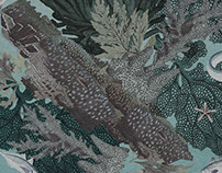 Print River & Sea