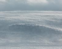 Arctic Curves
