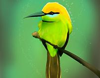 Pintura digital: pássaros