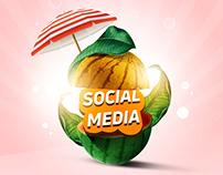 Social Media Designs ( New )