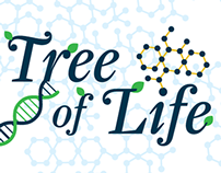 Tree of Life - board game
