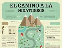 Infografía Hidatidosis