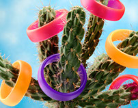 Cactus and Bracelets