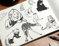 Animal Illustrations for Wellington Zoo