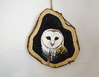 Tornuggla / Barn owl
