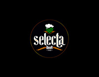 Catálogo 2016 | Selecta Beer