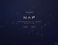 NAP Solutions Landing page