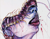 Centipede Watercolor Painting