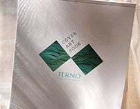 Terno Recordings Cover Art Book