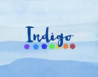 Indigo | Visual Synopsis