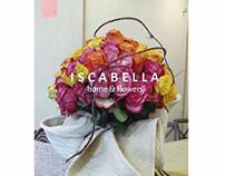 Iscabella
