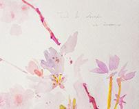 Four blossom and backyard studies (2015-2017)