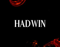 Hadwin - Free Serif Font