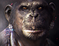 concept African monkey