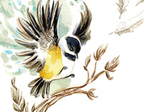 National Bird Project 2