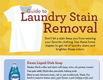 Guide to Laundry Stain Removal Infographic