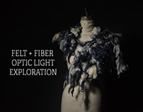 Felt and Fiber Exploration