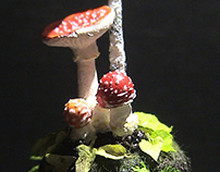 Fly agarics and a white birch