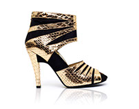 Ecommerce shoes