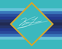 Branding Identity 2016