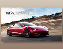 Tesla Roadster - Light