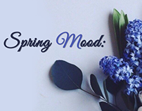 Spring Mood in OrdaSoft 2016 20% discount storew