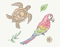 Tropical Animal Collection - Designed by Freepik