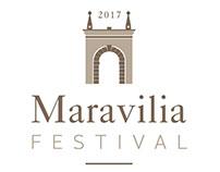 Architectural Mapping-Maravilia Festival - Verona/ 2017