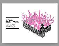 IL FUOCO DELLA NATURA — Exhibition design