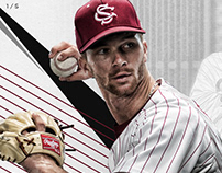 Gamecock Baseball senior graphics