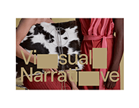 Visaul Narrative – visual identity