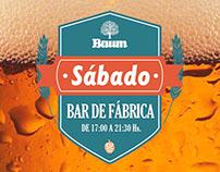 Cervecería Baum - Publicaciones diarias en redes