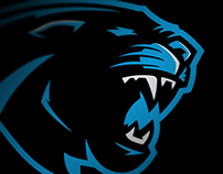 Carolina Panthers Rebrand Concept