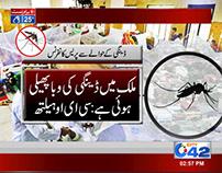 Dengue Template