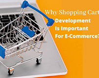 Why Shopping Cart Development Is Important?