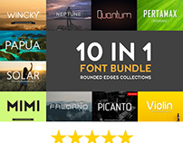 10 In 1 Font Bundle