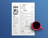 Free Clean and Attractive Resume Template