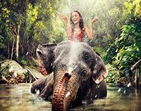 USV Calendar 2014 Elephant