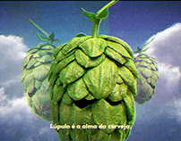 """Ambev . Skol Hops """"Hop is the beer Soul"""""""