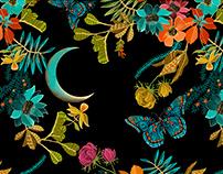 ESTAMPA - Borboleta da Lua