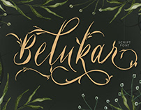 Belukar - Unique Display Script