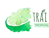 One Tropical and One Boho Logo Design