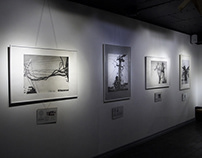 EXHIBITIONS OF DRAWING