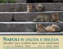 Napoli in salita e discesa