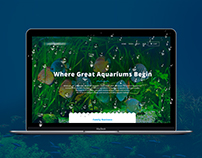 Aquarium | Web design