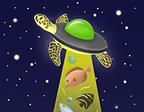 Unidentified Flying Turtle