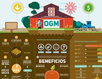 Infografía - Alimentos Transgénicos // GMO Infographic